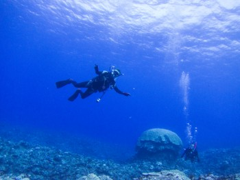 透明度抜群。後ろは巨大コブハマサンゴ
