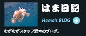 はま日記 むがむがスタッフ浜本のブログ